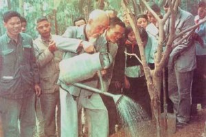 Significance of President Ho Chi Minh's tree planting festival